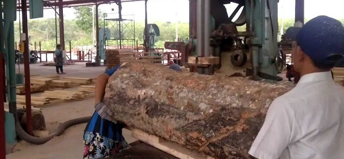 Thailand's rubberwood industry: a new rising star